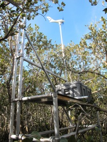 Wind generator to provide power for the system
