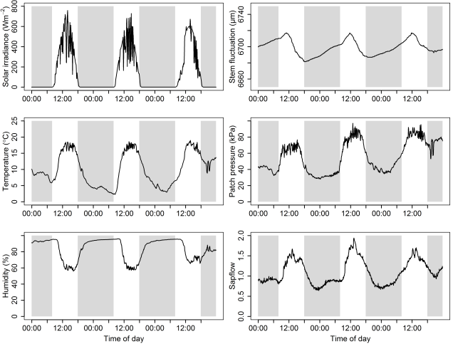 A three-day time-series of climatic factors (left column) and the associated water relations (right column) in mangroves.